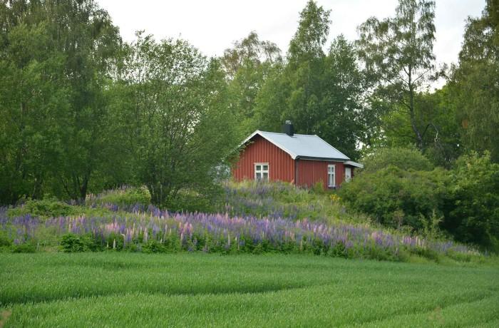 39. Lundbo og Solhaugen